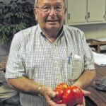 Tomato Wars of 2016