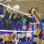 Lady Hounds beat Cats in three