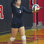 Seven straight for No. 1 Lady Cards