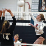 Cards, Bears dominate all-NW1A team