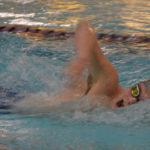 Cardinal swimmers sweep county foes