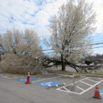 Spring snow brings damage, power outages