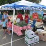 Farmers market is a growing success