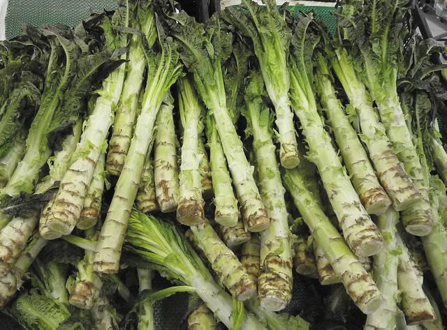 Lettuce Vegetable Name Foods Winter Warm Ear Muffs Faux Fur Ear
