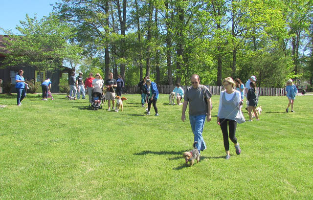 Dog Walk raises funds for shelter | Mt  Airy News