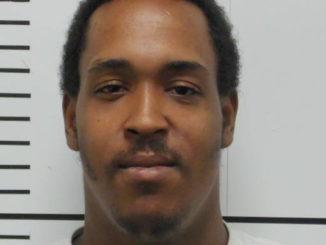 Break-in suspect caught on video, then in person
