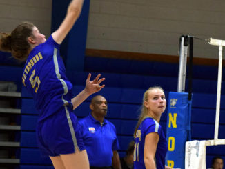 Lady Hounds misfire in loss to W. Stokes