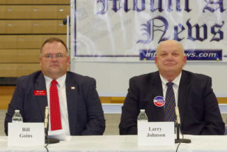 Johnson named new county chairman