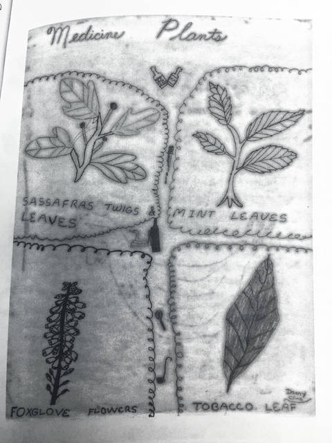 www.mtairynews.com: Folk remedies important in early life of Surry County