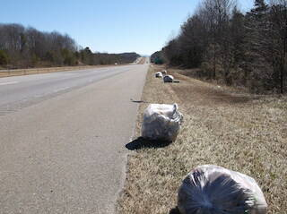 Tons of litter picked up in Surry