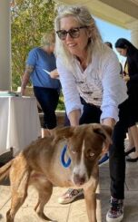 Rotary Club hears from animal groups